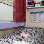 Английский язык с погружением в летнем детском лагере в Ирландии-3