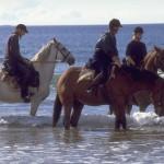 Верховая езда и английский язык в летнем лагере в Ирландии-1