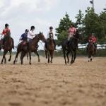 Верховая езда и английский язык в летнем лагере в Ирландии-2