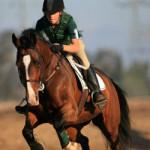 Верховая езда и английский язык в летнем лагере в Ирландии-5