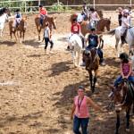 Верховая езда и испанский язык в летнем лагере в Марбелье, Испания-6
