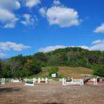 Верховая езда в летнем лагере для девочек в США-10