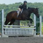 Верховая езда в летнем лагере для девочек в США-11
