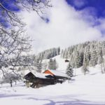 Горные лыжи в зимнем лагере в Швейцарии-2